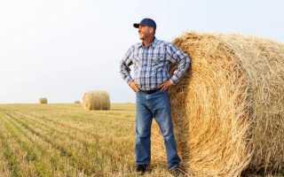 Пенсия для сельских жителей