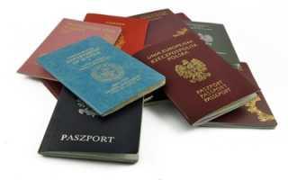 Заявление о двойном гражданстве образец заполнения
