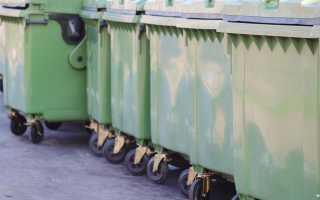 Выброс крупногабаритного мусора штраф