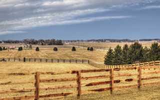 Договор дарения земельного пая сельхозназначения образец